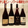 【送料無料】コストパフォーマンスに優れたチリのピノ・ノワール 赤ワイン 4本セット