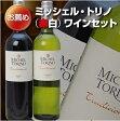 【送料無料】【ギフトボックス入り】今、注目のアルゼンチンワイン 赤ワイン白ワイン 2本セット