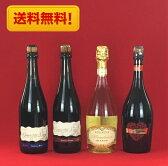 ワインセット 送料無料 イタリア ランブルスコ 微炭酸ワイン 飲み比べ 4本セット