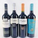 ワインセット アルゼンチン マルベック 赤ワイン 飲み比べ 4本セット 送料無料