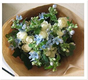 ブーケ・ピュアブルー【淡いブルー色のお花、オキシペタルム(ブルースター)を使った花束です...