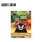 ニチリウ永瀬 野菜が元気に育つ肥料 650g