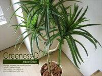 greeness-d