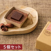 CACAOHUNTERSPlusダブルリッチチョコケーキ5個セット