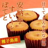 馬場製菓 安納芋すいーとぽてと(6個入)種子島産安納芋使用 【鹿児島銘菓】I12Z25
