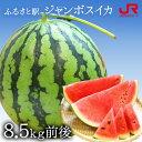 ふるさと駅 ジャンボスイカ(1玉8.5kg前後) 甘さ大きさ...