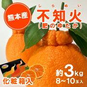 熊本県産 不知火(しらぬい)葉付化粧箱(3kg)