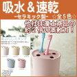 【在庫限り】歯ブラシスタンド セラミック製 吸水【選べる5色】【HLS_DU】