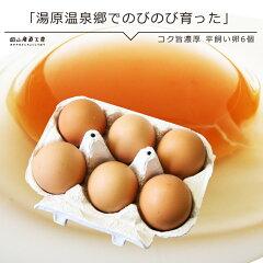 【岡山県真庭産】清流の流れる環境の中、平飼いして育てた元気な鶏が生んだ上質の卵です。コク...