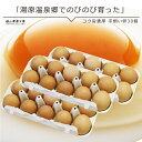送料無料 たまご 玉子 卵 無選別 こだわり卵 たまごごはんにぴったり 無精卵 平飼い たまご コク旨濃厚平飼い卵30個入10個包装X3