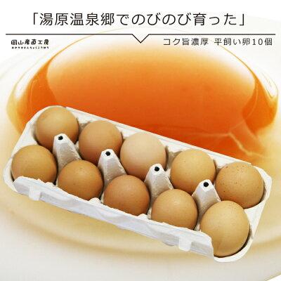 湯原の平飼い卵 湯原温泉 卵 レシピ スイーツ 焼きプリン
