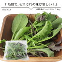 岡山産直工房で買える「野菜 ミックスリーフ50g 単品野菜 岡山県真庭産 大塚農園」の画像です。価格は190円になります。