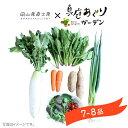 野菜セット 送料無料 真庭あぐり野菜セット 7〜8品 後払い...