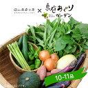 野菜セット 送料無料 真庭あぐり野菜セット カット野菜が1品...