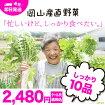 岡山県西日本野菜宅配10品