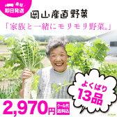 岡山産直野菜セット おまかせ13品^