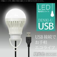 電球形USBLEDライトDENKI-U昼光色