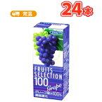 エルビーフルーツセレクション グレープ100 【200ml×24本入】紙パック〔果汁100% ぶどうジュース グレープジュース〕