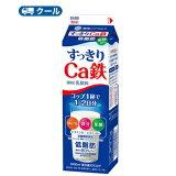 雪印 メグミルク すっきりCa鉄【1000ml×6本入】 クール便  送料無料 〔雪印 すっきりCa鉄 クール便 乳製品 牛乳 カルシウム〕