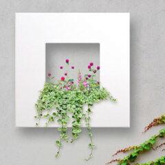 モダンなエクステリアの壁面装飾に。シンプルなグリーンの取り入れ方。【壁掛け】【額縁 プラン...