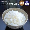 【新米】【令和2年産】《減農薬》《白米》秋田県産 あきたこまち12kg(2kg×6)【生産者直送】〈次郎米〉※沖縄県、離島は追加送料加算されます。
