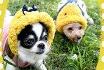 秋冬新作ラディカ【RADICA】ヒヨコさんパーカーSS-3Lサイズ小型犬秋冬ドッグウエア