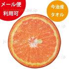 ヘミングス(heming's)リアルモチーフタオルフード:オレンジ(ORANGE)