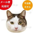 ヘミングス(heming's)リアルモチーフタオル:三毛猫