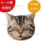 ヘミングス(heming's)リアルモチーフタオル:スリーピングキャット(眠り猫)