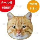 ヘミングス(heming's)リアルモチーフタオル:ふて猫