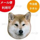 ヘミングス(heming's)リアルモチーフタオル:柴犬ブラウン