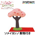 デコレコンコンブル旅ねこ日本横断桜めぐり旅ソメイヨシノ敷物つき