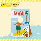 �ǥ���(decole)����֥�(concombre)�ƤΤޤä���ޥ����åȴ�ϥ����:�ϥ磻����ӡ���