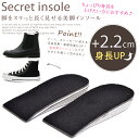 Insole22-01
