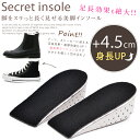 Insole45-01