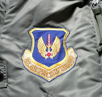 "No.BR13620BUZZRICKSON'SバズリクソンズLIONUNIFORMINC.typeMA-136thTacticalFighterWing""Skyblazers"""
