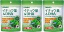 【送料無料】イチョウ葉&DHA オリヒロ 60粒入(30日分)×3個セット その1