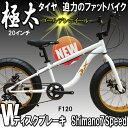 【送料無料】迫力の極太 ファットバイク Wディスクブレーキ 3D立体フレーム Shimno7Speed 20インチ20x4.1/4 FATBIKE SNOWBIKE DuXデュークスF120 GOLDENリム仕様