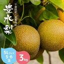 【送料無料】 梨 豊水 3kg 5L サイズ 6玉 千葉県産...