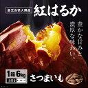 さつまいも 紅はるか 鹿児島 生芋 6kg 1箱 送料無料 S~L混載 土付き 美味しい 鹿児島県 大隅産 美容 ギフト べにはるか サツマイモ 焼き芋に まとめ買い 3