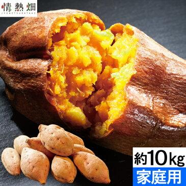 さつまいも 鹿児島県種子島産 安納芋(生芋)訳あり 家庭用 約10kg 1箱【送料無料】からいも サイズおまかせ お試し おトクな大容量