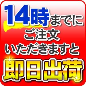 【2本セット】【送料無料】【交換時期目安シール付き】日本トリム純正品トリムイオンBLカートリッジ(Bタイプ)【新品】