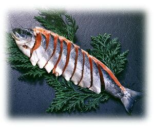 紅鮭姿切り
