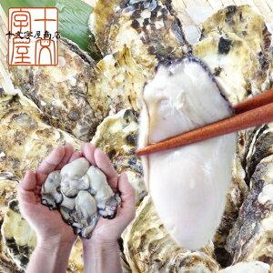 広島県産牡蠣むき身 1kg NET850g 使い道豊富な中粒Mサイズ約50粒前後 冷凍 かき カキ 加熱用