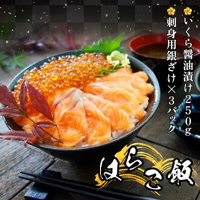 脂の乗った三陸産お刺身銀鮭とイクラの親子丼セット
