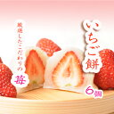【 いちご いちご大福 苺 父の日 和菓子 ギフト スイーツ