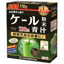 山本漢方 ケール粉末100% 青汁 170g_