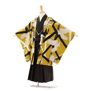 [Rental] [Hakama] Shichigosan boy kimono 0296 JAPANSTYLE Hawk / Golden tea × Line crossing 3-year-old boy fy16REN07