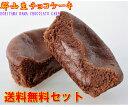 【送料無料セット】生チョコケーキ 6個/ホワイトデー 郡山名