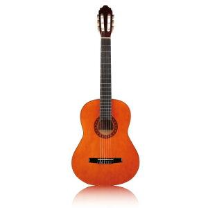 Valencia CG-10 《クラシックギター》【送料無料】